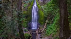 This Easy Waterfall Hike In Washington Is Almost Too Good To Be True