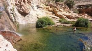 New Mexico's Most Refreshing Hike Will Lead You Straight To A Beautiful Swimming Hole
