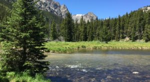 This Low Key Waterfront Trail In Montana Will Turn You Into A Regular Hiker