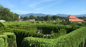 The Gorgeous Garden Maze In Virginia That Will Enchant You At Every Turn