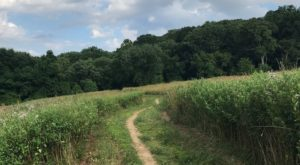 The Tried And True Trail In Delaware That Will Take You On A Scenic Adventure