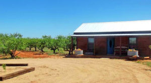 There's A Bed and Breakfast On This Peach Farm Near Austin And You Simply Have To Visit