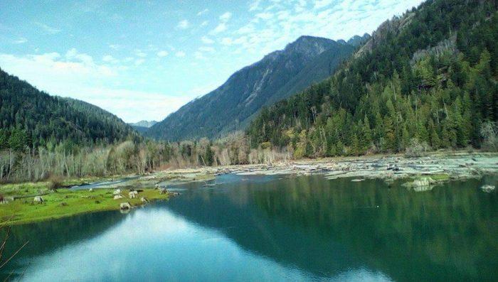 Get Away From It All At Lake Cushman In Washington