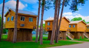 Your Family Will Fall In Love With This Quirky Wisconsin Tree House Resort