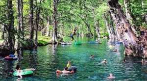 This Hidden Lagoon Near Austin Has Some Of The Bluest Water In The State