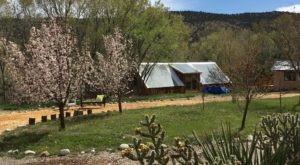 Stay In A Desert Casita On This Spring-Fed Pond In New Mexico For The Perfect Getaway