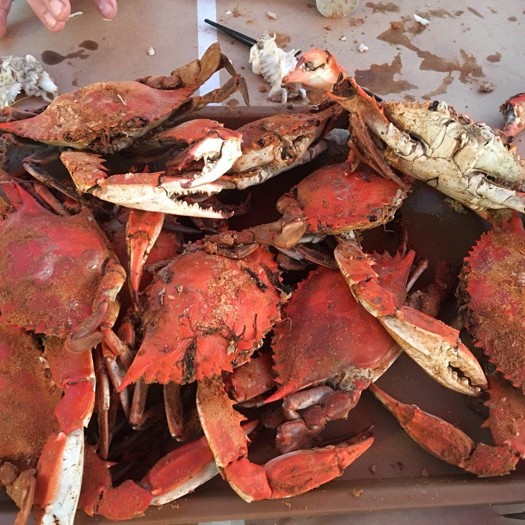 Yummy Crab Charlotte