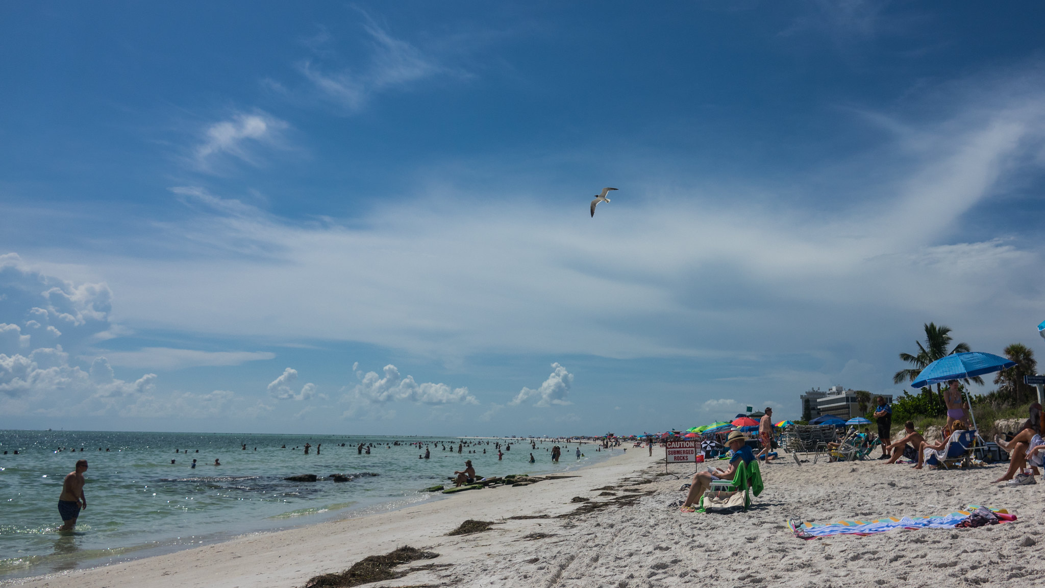 These 4 Florida Beaches Have Fecal Bacteria Health Advisories