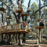 This Nighttime Treetop Obstacle Course In Florida Lets You Adventure By Moonlight